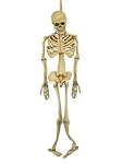 Full Body Latex Skeleton