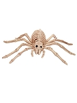 Skeleton Spider Prop