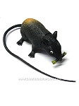 Colorized Rubber Rat