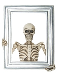 Skeleton Frame Wall Decoration