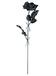 Black Rose with Barbed Wire Stem