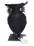 Flocked Black Owl Prop