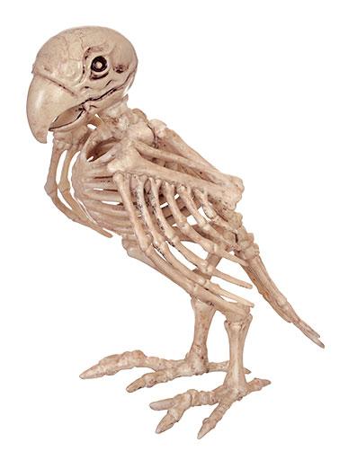 SKELETON BIRD PIRATE HALLOWEEN DECORATION TWEETY BONES POSE PARROT GASPARILLA