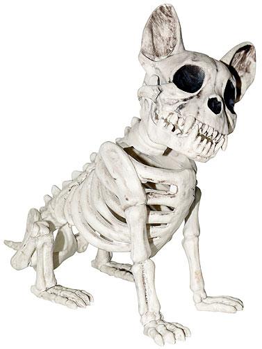 French Bulldog Skeleton Prop Decoration Halloween Skeleton Dogs