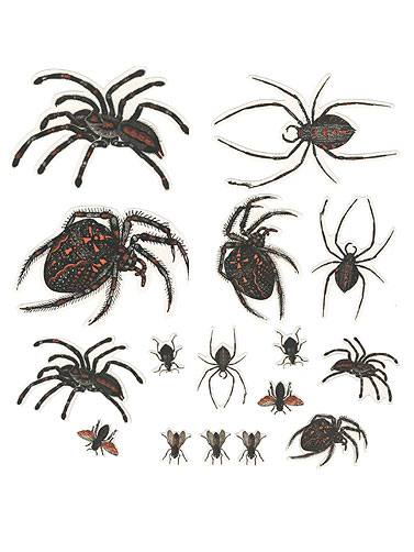 Spider Vinyl Window Clings