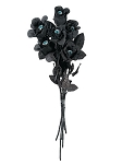 Black Roses with Eyeballs