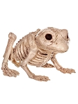 Skeleton Toad Prop