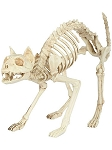 Skeleton Cat Prop