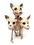 Three Heads Skeleton Dog