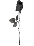 Black Fabric Rose