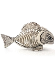 Skeleton Fish Prop
