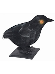 Realistic Crow with Light-Up Eyes