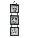 Tiered Skeleton Wall Decor