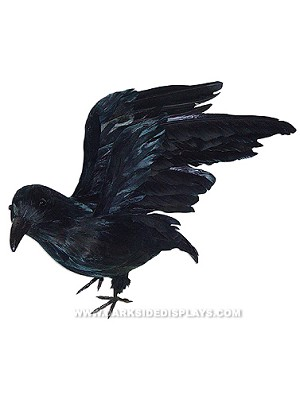 Feathered Crow Prop - Open Wings