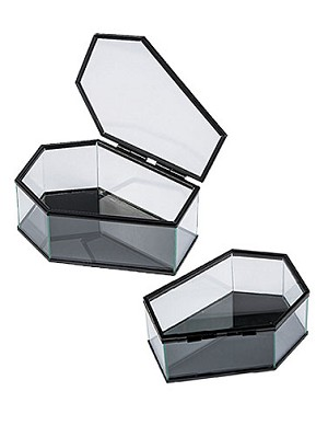 Glass Coffin Display Case Set