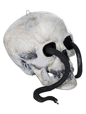 Plastic Skull with Snake Prop